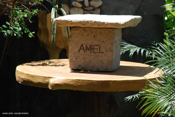 resting-place-for-amiels-ashes_wawam