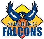 adamson soaring falcons